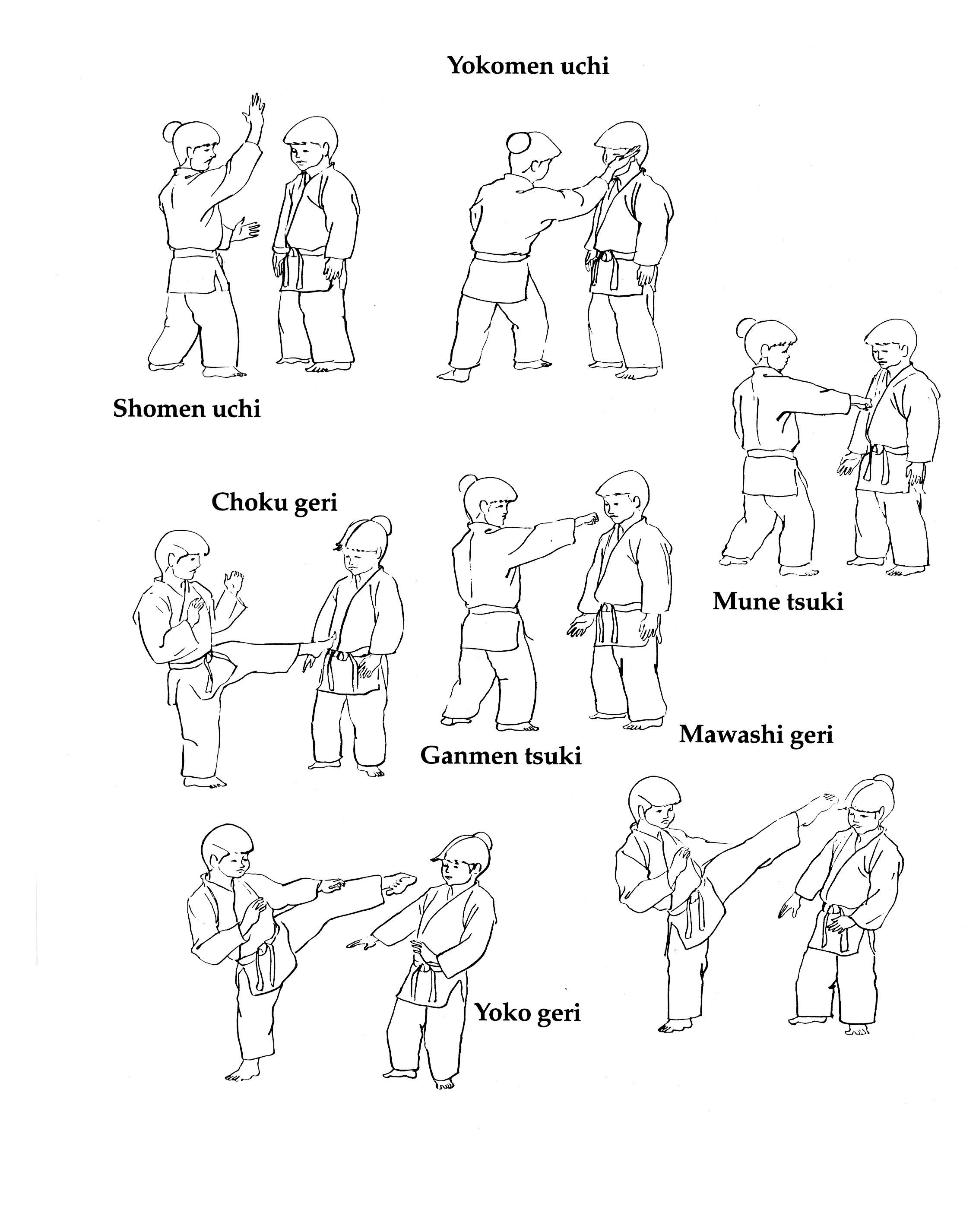 Slika Aikido_2015_2