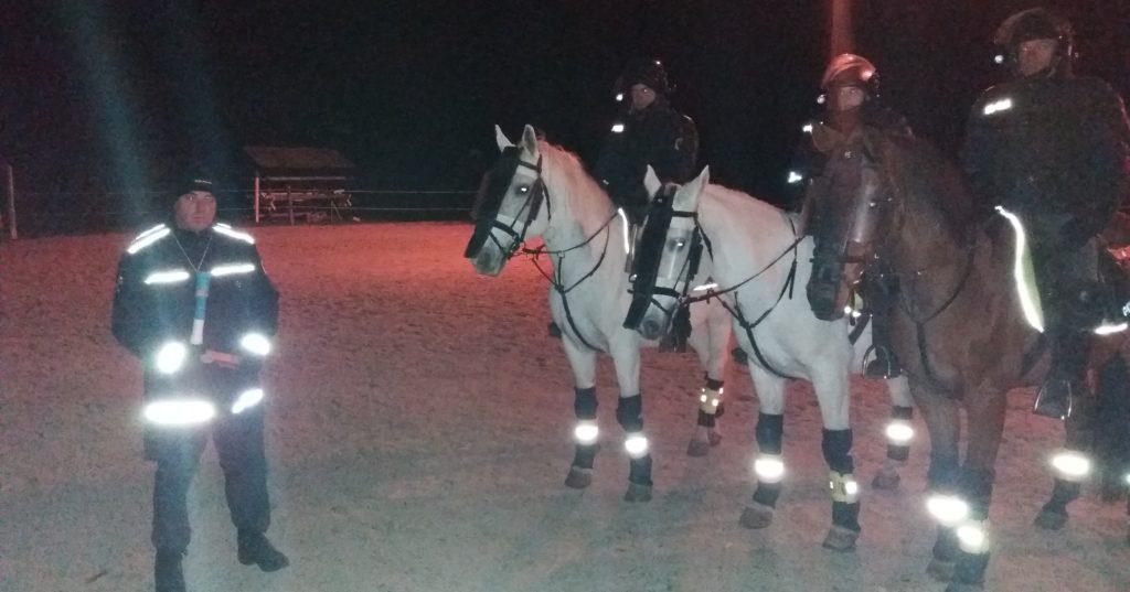 policijska-konjenica-varensvet-si-2