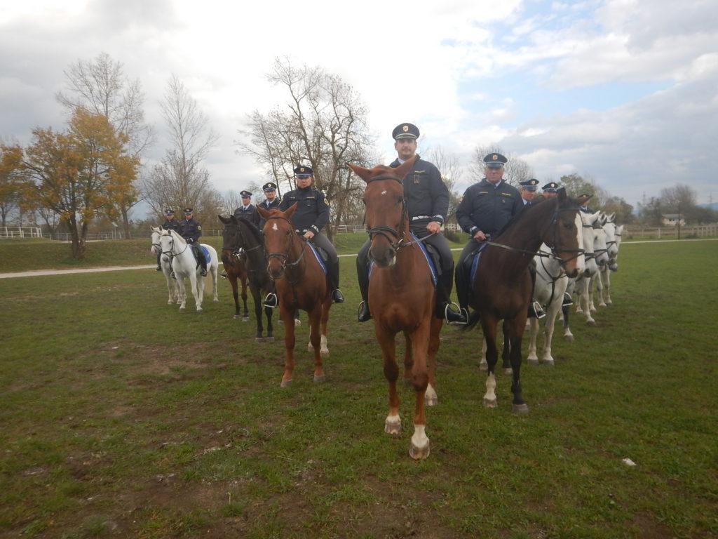 konjeniska-policija